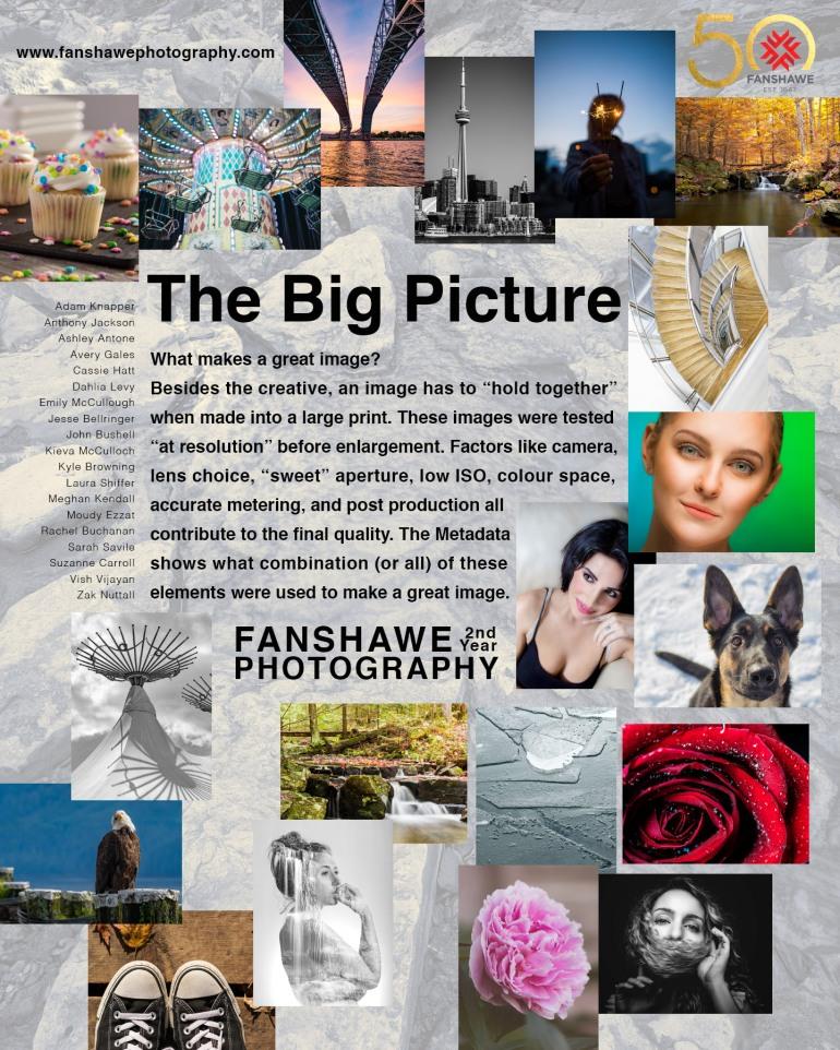 BigPrint-FanshawePhotography-Satellite